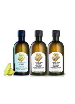 The Body Shop Ginger Shampoo 400ml x3